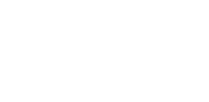 Audit IT logo